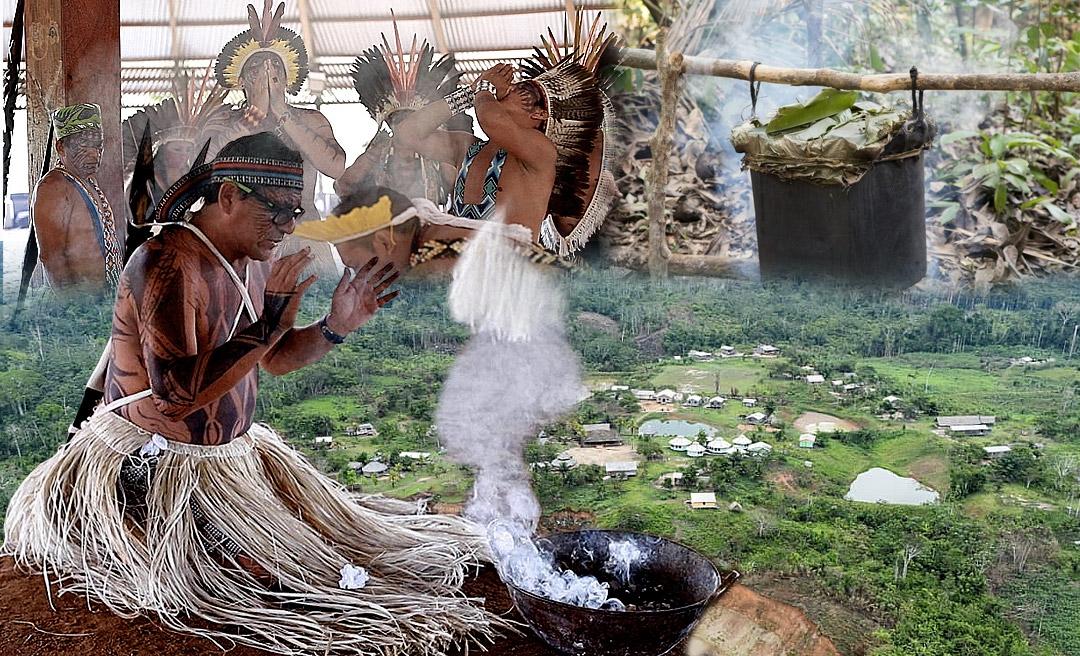 Isolamento pela Covid-19 reconecta o povo Yawanawa com a medicina ancestral da floresta